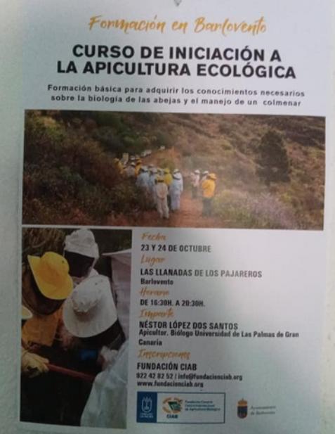 Iniciación a la Apicultura Ecológica